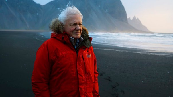 David Attenborough, Una vida en el planeta (RU, 2020)